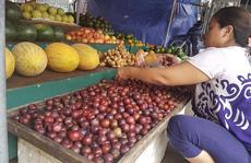 Mận lạ đội lốt 'mận Sapa' nhan nhản trên thị trường
