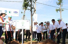 Quỹ 1 triệu cây xanh và Vinamilk: Trồng hơn 110.000 cây xanh tại Bà Rịa - Vũng Tàu