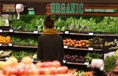 Nhiều người chuộng thực phẩm nguồn gốc tự nhiên