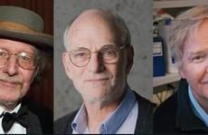 Giải Nobel Y học về tay 3 nhà khoa học người Mỹ
