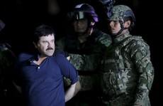 Trùm ma túy El Chapo 'sang' Mỹ ngay trước ngày ông Trump nhậm chức