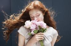 Vợ chồng hục hặc vì lẵng hoa bí ẩn