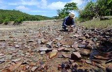 Dấu tích thương cảng sầm uất nhất Việt Nam