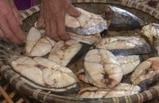 'Chết thèm' nhìn nướng cá bằng than ở Cửa Lò ngày rét