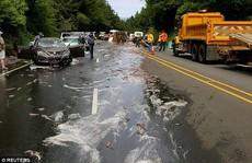 Mỹ: Cảnh tượng nhầy nhụa dễ sợ trên đường cao tốc