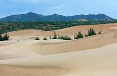 Bạn nên đến Ninh Thuận vào mùa hè này!