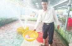 'Vua cá' Tây Nguyên với bí quyết bán ra 6.000 tấn/năm