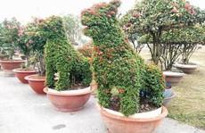 """Những linh vật """"khủng"""" tạo hình từ hàng trăm cây hoa mẫu đơn"""