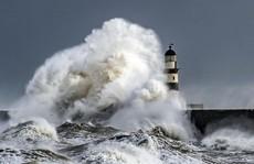 Choáng ngợp với những con sóng khổng lồ tuyệt đẹp nhưng cũng đầy hăm dọa