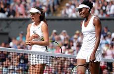 Thán phục khi 'lão bà' Venus trở lại chung kết Wimbledon