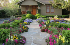 Trang hoàng nhà cửa đón Xuân
