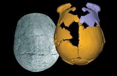 Phát hiện 'loài người mới' ở Trung Quốc, nửa người nửa Neanderthal