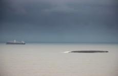 Bộ Công an vào cuộc vụ chìm hàng loạt tàu hàng trên biển Quy Nhơn