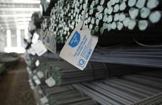 'Bầu' Long: 'Không thể làm liều với dự án thép Dung Quất'