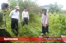 Kiến nghị kiểm điểm Chủ tịch huyện Phú Quốc