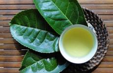 Lý do bạn nên uống trà xanh vào buổi sáng