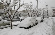 Kinh ngạc tuyết phủ trắng sa mạc ở Trung Đông