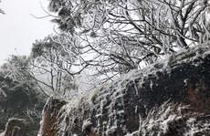 Tuyết rơi dày tại thác Bạc, Ô Quí Hồ (Sa Pa) sáng 31-1