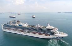 Du lịch bằng tàu biển hút khách Việt