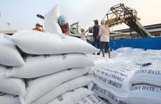 Gạo xuất khẩu vẫn chưa được gắn logo 'Vietnam rice'