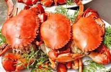 6 loại thức ăn để qua đêm rất hại cho sức khỏe