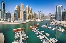 Giới siêu giàu Arab kiếm tiền thế nào?
