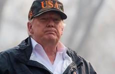 Nói Phần Lan cào cỏ khô để ngăn cháy rừng, ông Trump bị chế nhạo