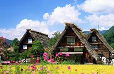 Những ngôi nhà đẹp tựa tranh vẽ ở nông thôn Nhật Bản