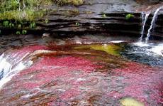 Khó tin nhưng có thật: Sông có 5 màu biến đổi theo mùa