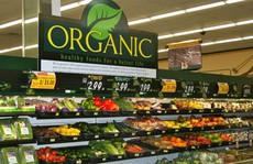 Cơn 'khát' rau củ, trái cây organic