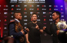 Nỗ lực đưa MMA đến Việt Nam