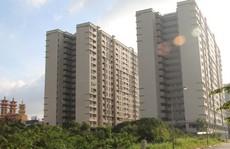 Giá bán nhà đất năm 2019 sẽ ổn định, không tăng đột biến