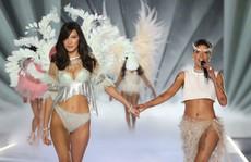 Sao nữ 'đại chiến' quanh thương hiệu thiên thần nội y