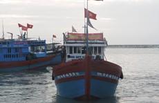 Hàng trăm tàu cá Lý Sơn nô nức mở cửa biển đầu xuân