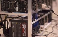 Cuộc sống bí mật của những sinh viên đào Bitcoin trong ký túc xá