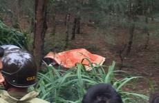 Người đàn ông Hàn Quốc tử vong bí ẩn ở rừng phi lao