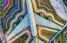 Kiến trúc đẹp mê hồn của thành phố Dubai từ trên cao