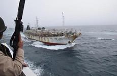 Tàu cá Trung Quốc lộng hành