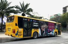 Hai tuyến xe buýt miễn phí ra vào sân bay Tân Sơn Nhất dịp Tết