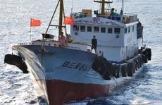 Tàu cá Trung Quốc lộng hành: Hạm đội 'bóng ma'