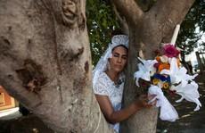 Cưới cây làm chồng