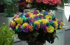 Ngắm hoa hồng 7 màu, hoa lan mini tại triển lãm quốc tế về nông nghiệp