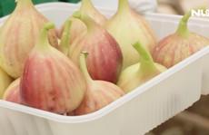 Thử ăn sung Mỹ rất thơm ngon, trồng ở Đồng Nai