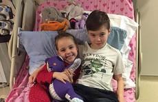 Xúc động bé trai 7 tuổi xin được hiến tủy cứu em