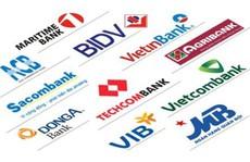 Chủ đầu tư dựa vốn vay ngân hàng sẽ... khó sống