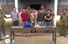 Bắt 5 đối tượng buôn ma túy xuyên quốc gia, thu giữ 50.600 viên và súng K59