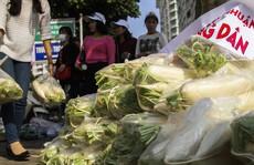 Chùm ảnh: Người Hà Nội nhiệt tình 'giải cứu' củ cải