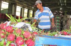 Trung Quốc 'siết' nhập khẩu trái cây từ Việt Nam