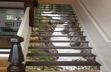 Cầu thang 3D khiến khách đến nhà 'không thể rời mắt'