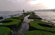 Biển Hải Dương - 'thánh địa sống ảo' mới ở Huế